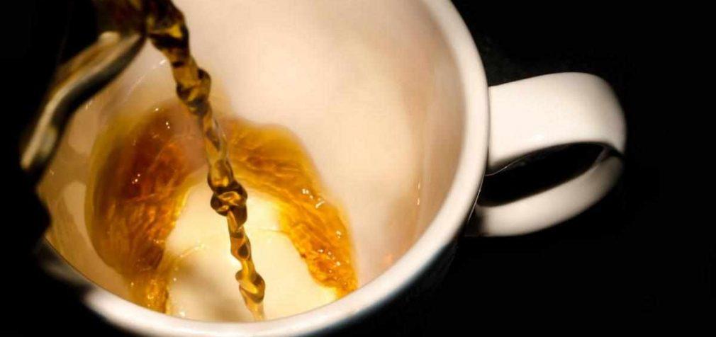 Пуэр: эффект чайного опьянения и не только
