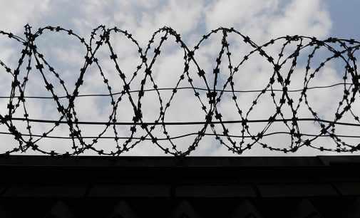 Почти 900 заключенных в ОРДЛО просятся в тюрьмы на территории Украины