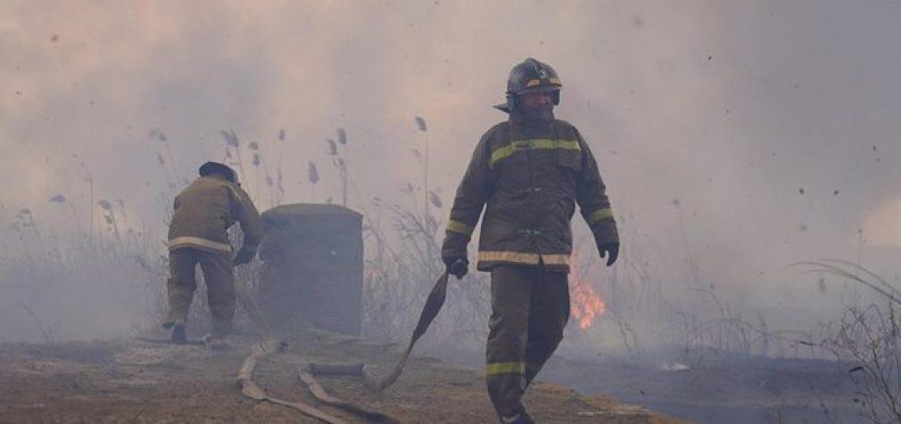 ГСЧС борется с пожарами в плавнях на Одесчине и Николаевщине. ВИДЕО+ФОТОрепортаж