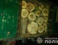 На Днепропетровщине двое мужчин незаконно рубили лес и вывозили древесину на автомобиле, – ФОТО
