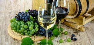 В Украине – рекордное сокращение объёмов виноделия