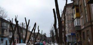 На захист міської рослинності