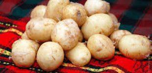 Украина увеличила импорт картофеля в 43 раза