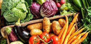 В Украине снизились цены на некоторые виды овощей и гречку