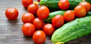 В Украине стремительно падают цены на импортные огурцы и томаты