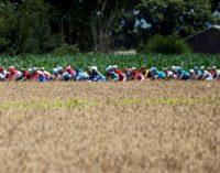 Організатори «Тур де Франс» змінюють дати велогонки, щоб провести її в 2020 році
