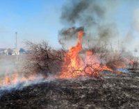 33 пожара за сутки: спасатели просят жителей Днепропетровщины не сжигать траву, – ФОТО