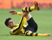 Німеччина має план поновлення футбольного чемпіонату