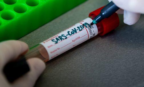 Ще один випадок коронавірусної інфекції у Кам'янському