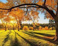 Погода в Днепре на сегодня и выходных: что обещают синоптики 30 октября – 1 ноября