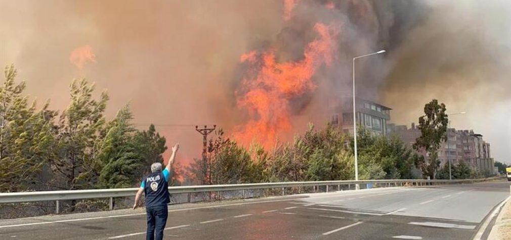 В Турции, Сирии и на Килиманджаро бушуют лесные пожары