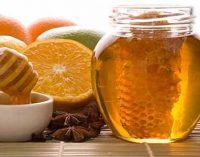 Экспорт украинского мёда достиг абсолютного рекорда