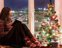 До Нового года остался месяц: сколько будут стоить ёлки