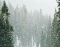 Погода в Днепре сегодня: прогноз на 29 декабря