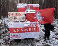 США готовы помочь организовать выборы в Беларуси, – Джули Фишер
