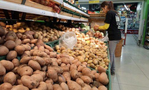 Импорт картофеля в Украину: география изменилась