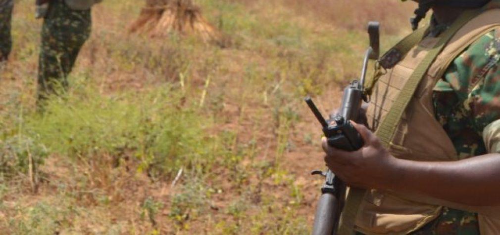 Нападения боевиков в Нигере: погибли 137 мирных жителей