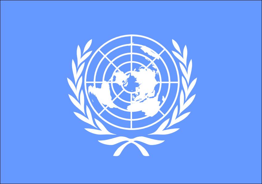 ООН потребовала от Саудовской Аравии прекратить авиаудары по Йемену