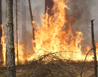 «Чрезвычайная опасность»: за сутки в Днепропетровской области произошло 37 пожаров, — ФОТО